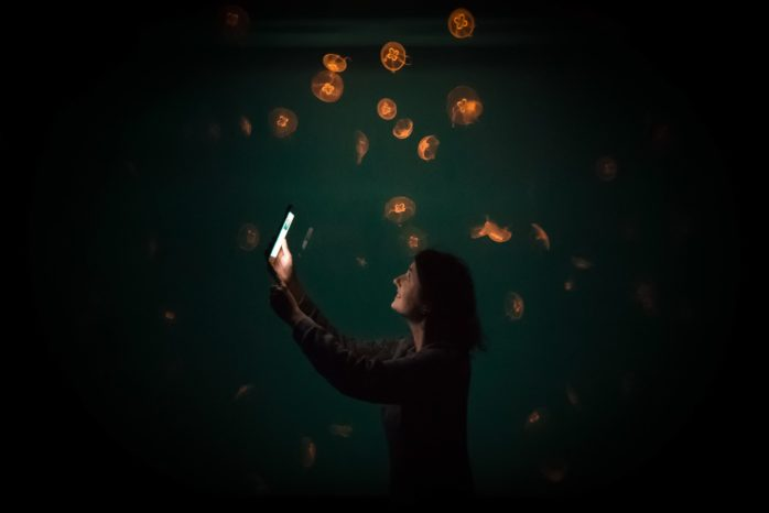A woman holding up an iphone surrounded by faintly glowing jellyfish